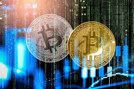 The Buzz on Why Is Crypto So Important And Should I Care?